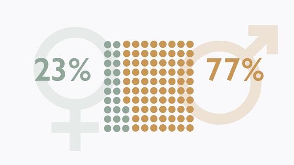 vad är jämställdhet